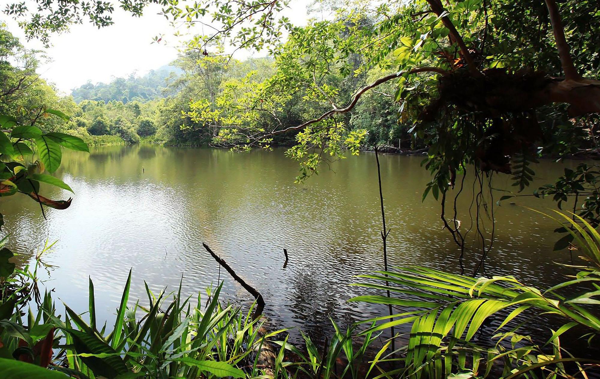Élvezze a természet nyugalmát